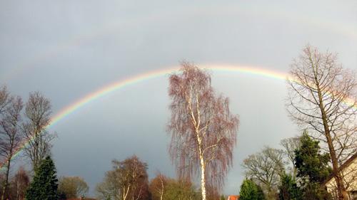 Regenbogen_Birkenstrasse