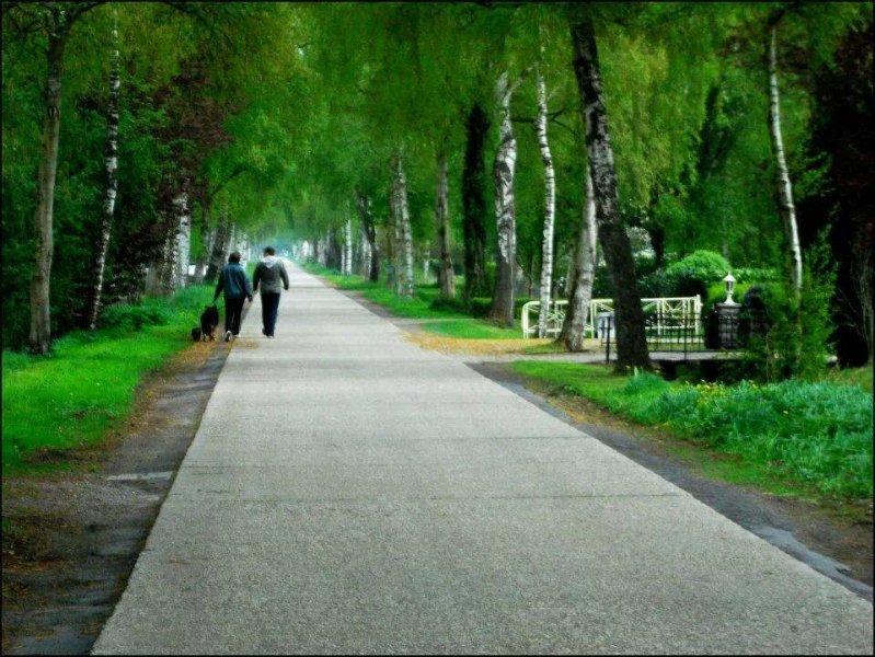 Gemühtlicher Spaziergang auf der Birkenstrasse